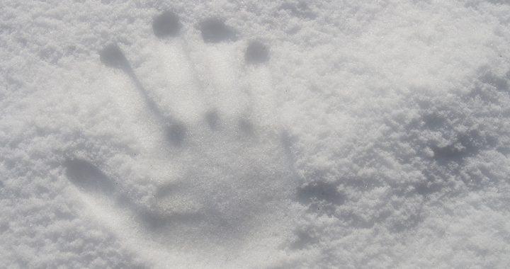 winterhanden wintervoeten